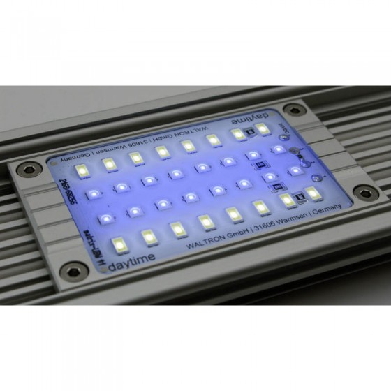 Daytime Led Modul Ultra Blue White 1:1