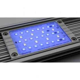 Daytime Led Modul Ultra Blue White 3:1